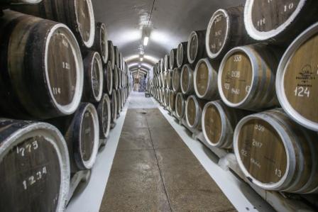 Посетителям «Массандры» расскажут о пользе винограда и вина