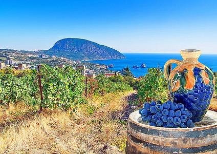 Гендиректор «Массандры»: При такой слаженной работе мы превратим Крым в край цветущих виноградников - Крыминформ